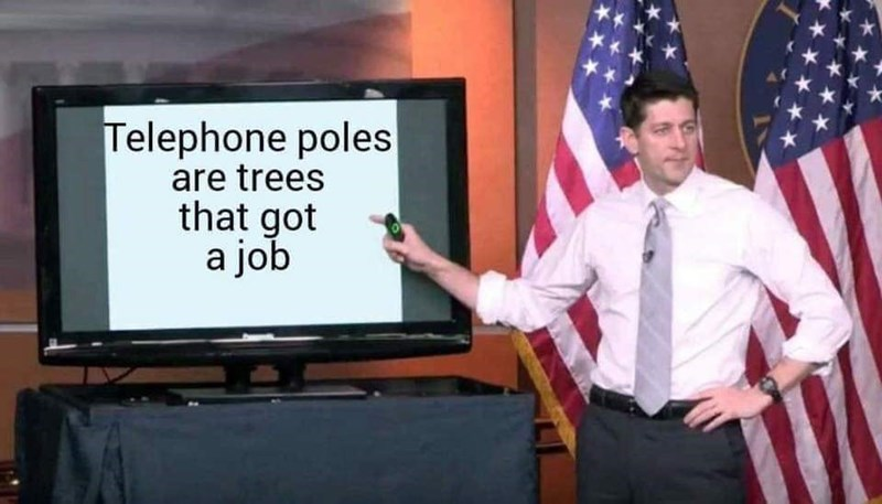 "Pic of Paul Ryan pointing at a screen that reads, ""Telephone poles are trees that got a job"""