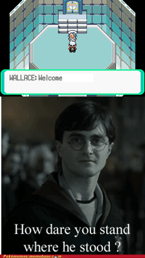 Harry Potter reacting accusingly to Wallace from Pokemon