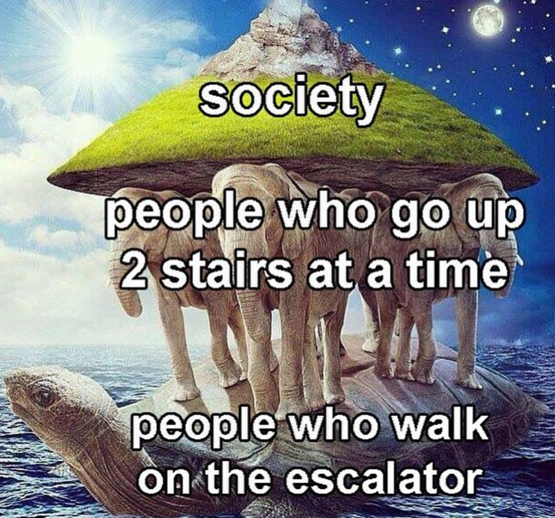 meme about people who don't go up just 1 stair at a time holding up society