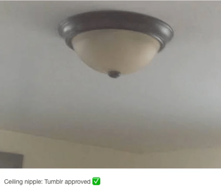 Ceiling - Ceiling nipple: Tumblr approved
