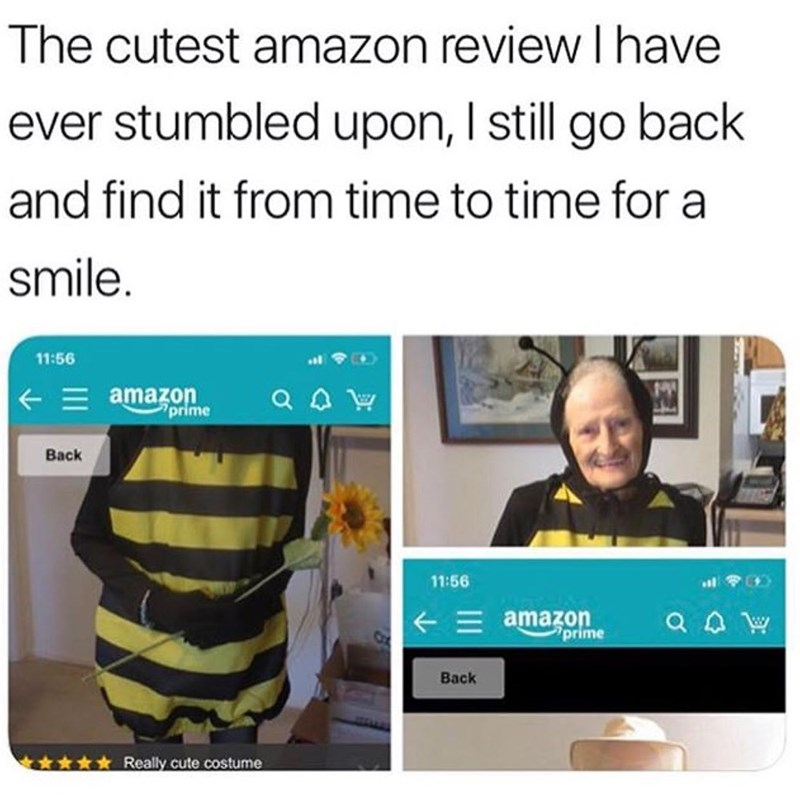 pic of a granny reviewing a bee costume from amazon