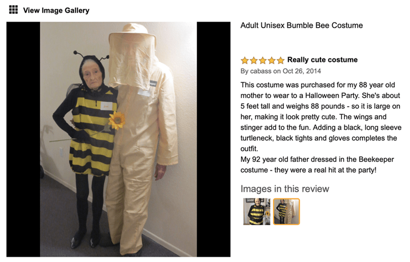 pic of granny in the bee costume and her husband dressed as a beekeeper