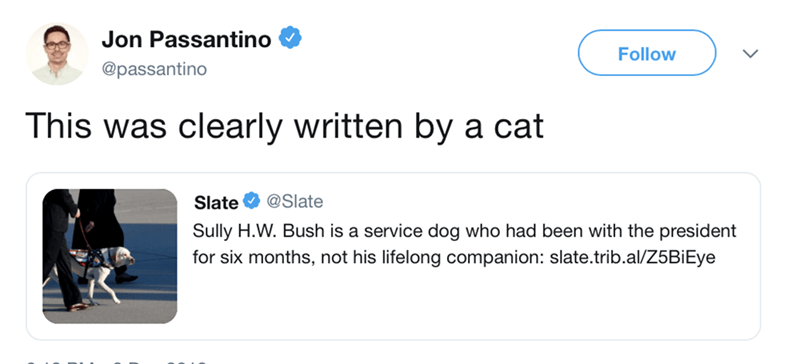 insensitive tweet about George HW Bush's dog written by a cat