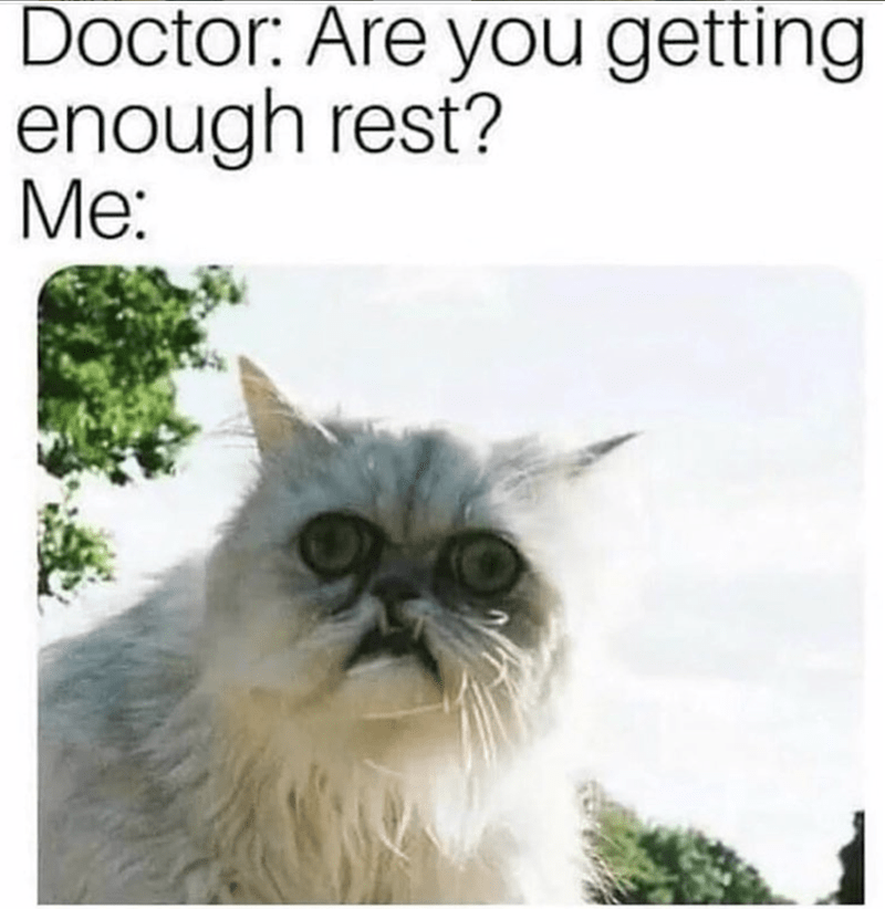 meme about being sleep deprived with picture of cat with deep set tired looking eyes