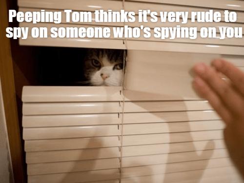 You tell \'em, Tom.