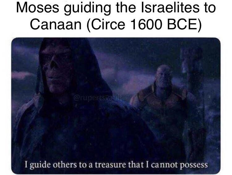 meme about Moses not being able to go to Israel but leading the Jews there anyway