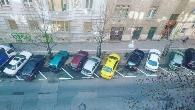 photo of street with all the cars parked outside the parking lines
