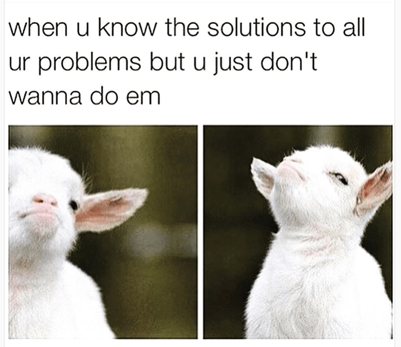 goat meme about not fixing the problems that you know can be fixed