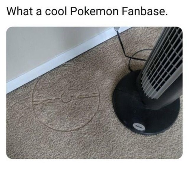 Floor - What a cool Pokemon Fanbase.