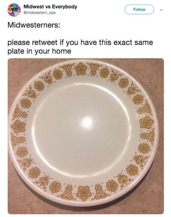 Dishware - Ope Midwest vs Everybody @midwestern ope Follow Midwesterners: please retweet if you have this exact same plate in your home OKDAD