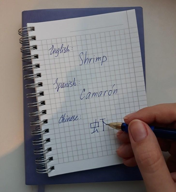 Text - Ingtrsh Shrimp Spenish Camaron Clainese