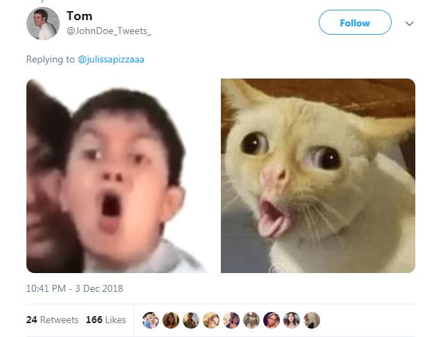 Face - Tom Follow @JohnDoe_Tweets_ Replying to @julissapizzaaa 10:41 PM 3 Dec 2018 24 Retweets 166 Likes