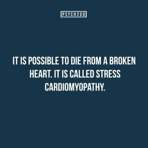 Text - PSYCH 2G0 IT IS POSSIBLE TO DIE FROM A BROKEN HEART. IT IS CALLED STRESS CARDIOMYOPATHY