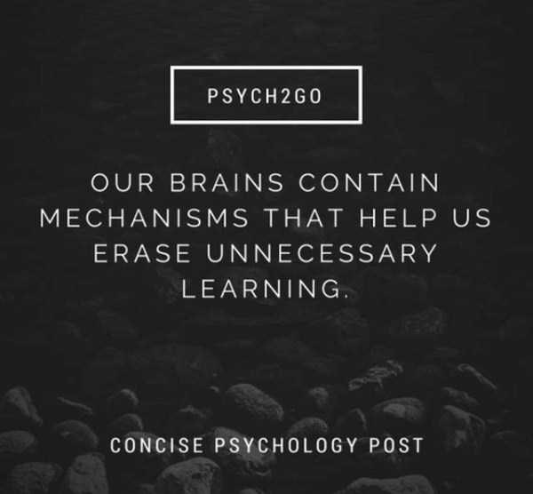 Text - PSYCH 2G0 OUR BRAINS CONTAIN MECHANISMS THA T HELP US ERASE UNNECESSARY LEARNING CONCISE PS YCHOLOGY POST