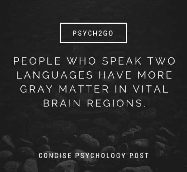Text - PSYCH2G0 PEOPLE WHO SPEAK TWO LANGUAGES HAVE MORE GRAY MATTER IN VITAL BRAIN REGIONS. CONCISE PSYCHOLOGY POST