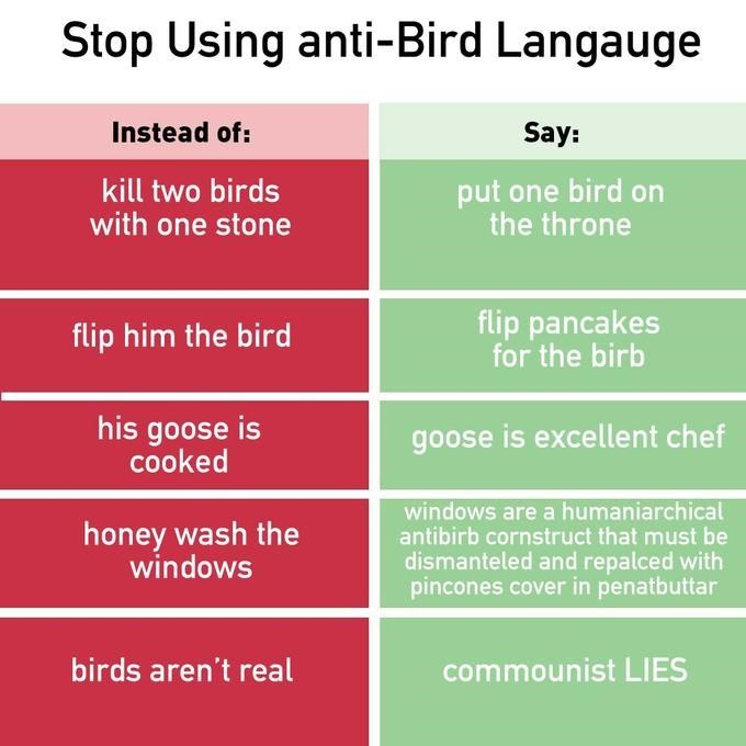 Text - Stop Using anti-Bird Langauge Instead of: Say: put one bird on the throne kill two birds with one stone flip pancakes for the birb flip him the bird his goose is cooked goose is excellent chef windows are a humaniarchical antibirb cornstruct that must be honey wash the windows dismanteled and repalced with pincones cover in penatbuttar birds aren't real commounist LIES