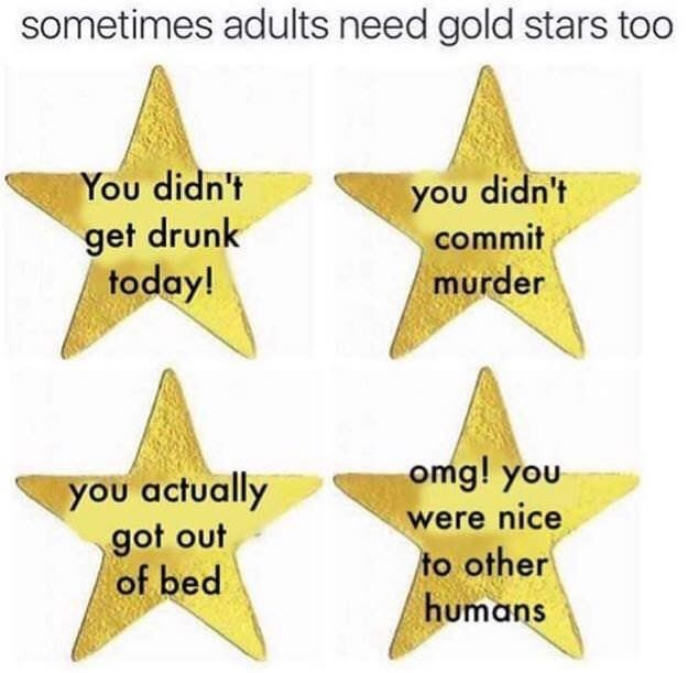Text - sometimes adults need gold stars too you didn't commit You didn't get drunk today! murder omg! you you actually got out of bed were nice to other humans