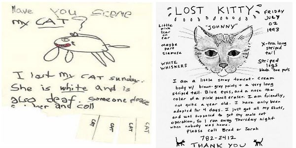 funny missing pet posters