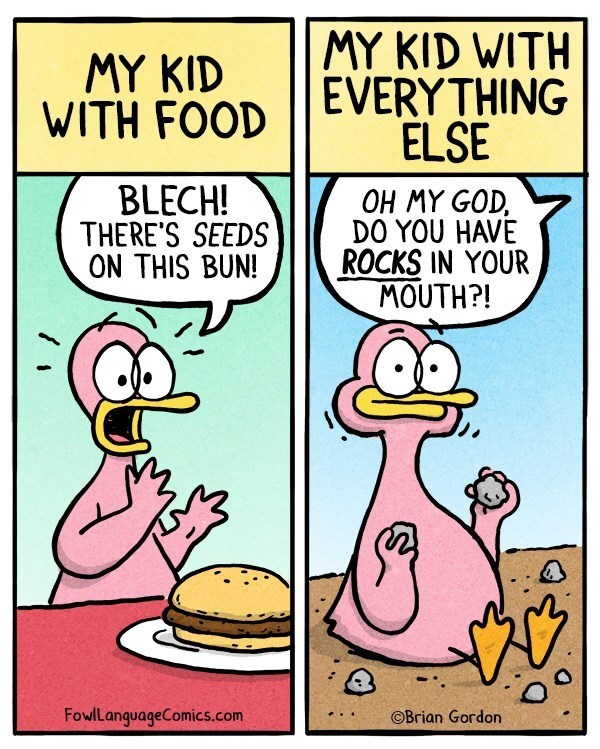 "First panel's caption reads, ""My kid with food"" above an illustration of a toddler duck saying ""Blech! There's seeds on this bun!"" next to another panel's caption that reads, ""My kid with everything else"" above an illustration of the toddler duck eating rocks and someone else saying, ""Oh my God, do you have rocks in your mouth?!"""