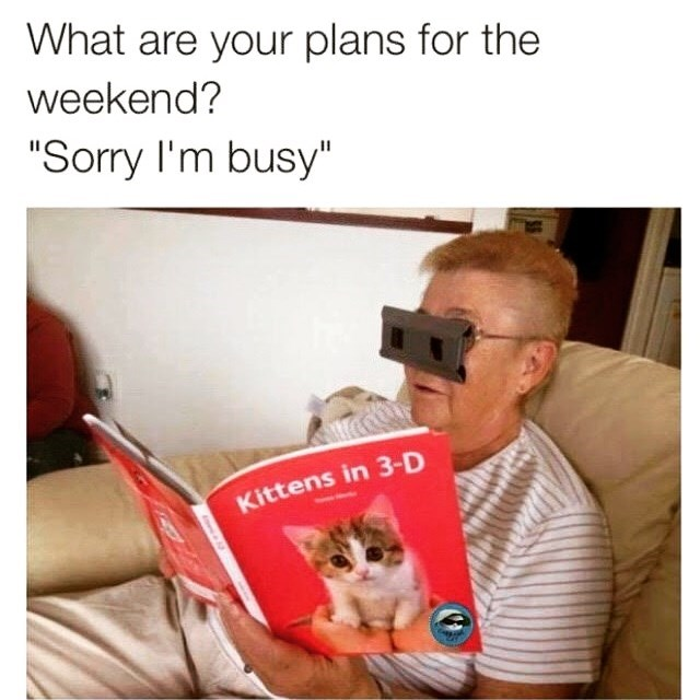 meme about not going out on weekends with picture of woman watching 3d pictures of kittens