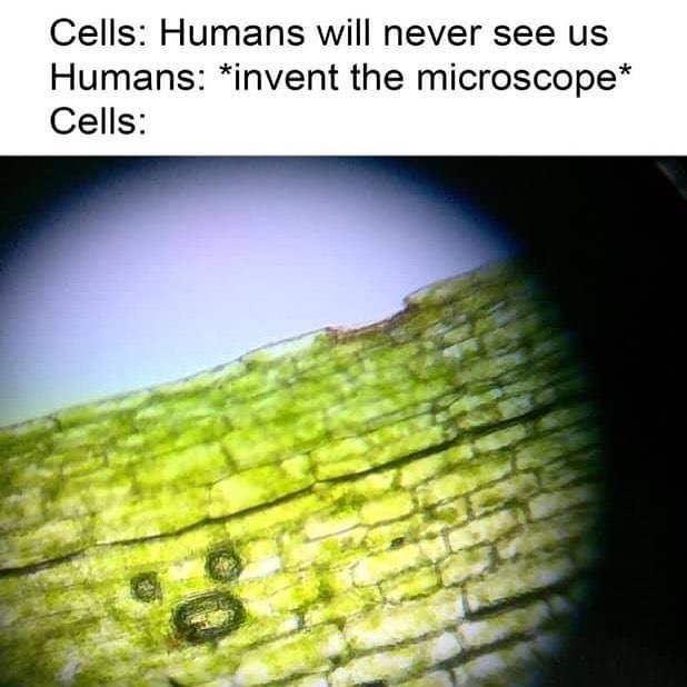 Funny meme about cells.