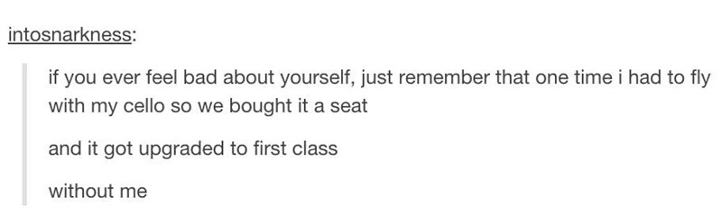 "Tumblr post that reads, ""If you ever feel bad about yourself, just remember that one time I had to fly with my cello so we bought it a seat. And it got upgraded to first class. Without me"""