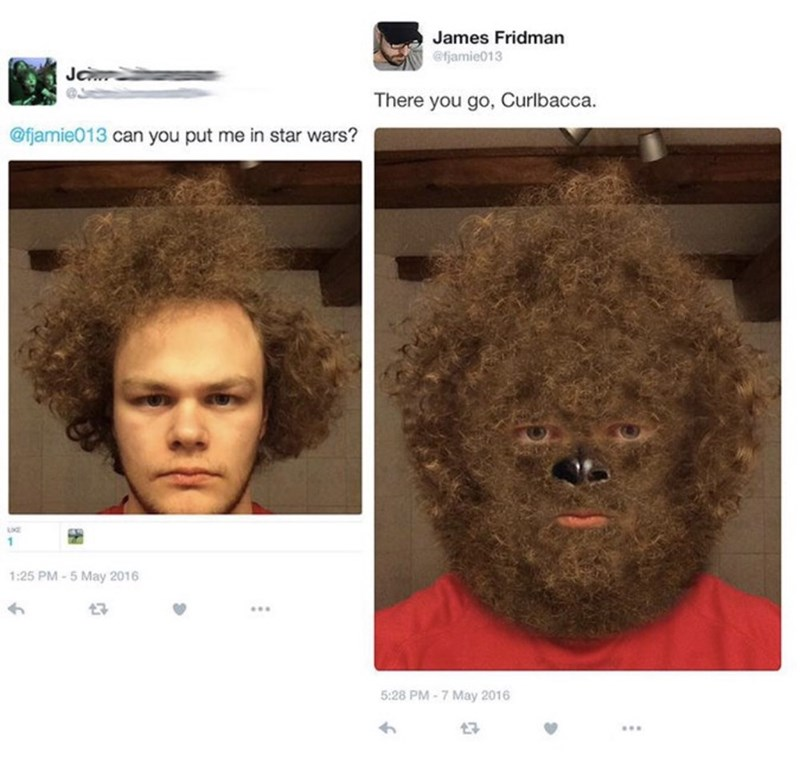 guy asks to be put into Star Wars and gets photoshopped into a Wookie