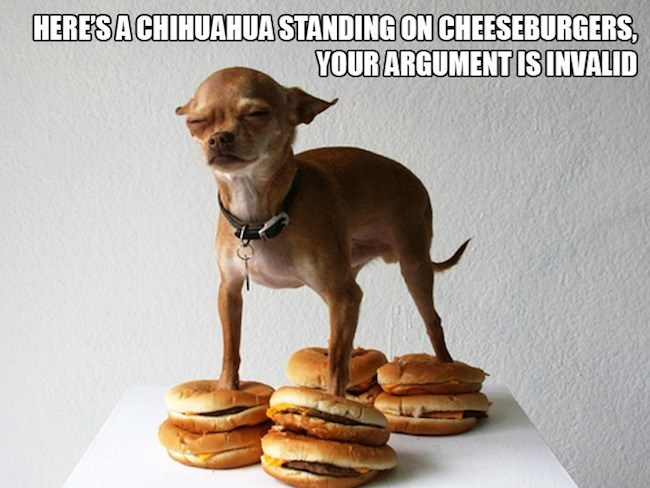 Cheezburger Image 9245828352