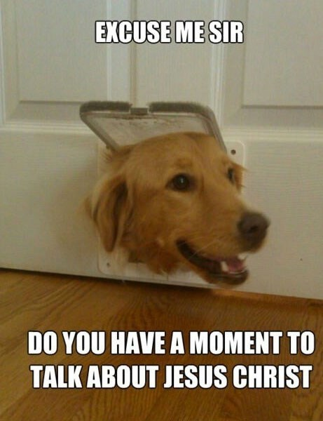 meme about missionary dogs with picture of dog peeking through cat flap in door