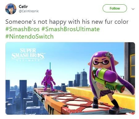 Technology - Celir Follow @CelirKresnik Someone's not happy with his new fur color #SmashBros #SmashBrosUltimate #NintendoSwitch SUPER SMASH BRES