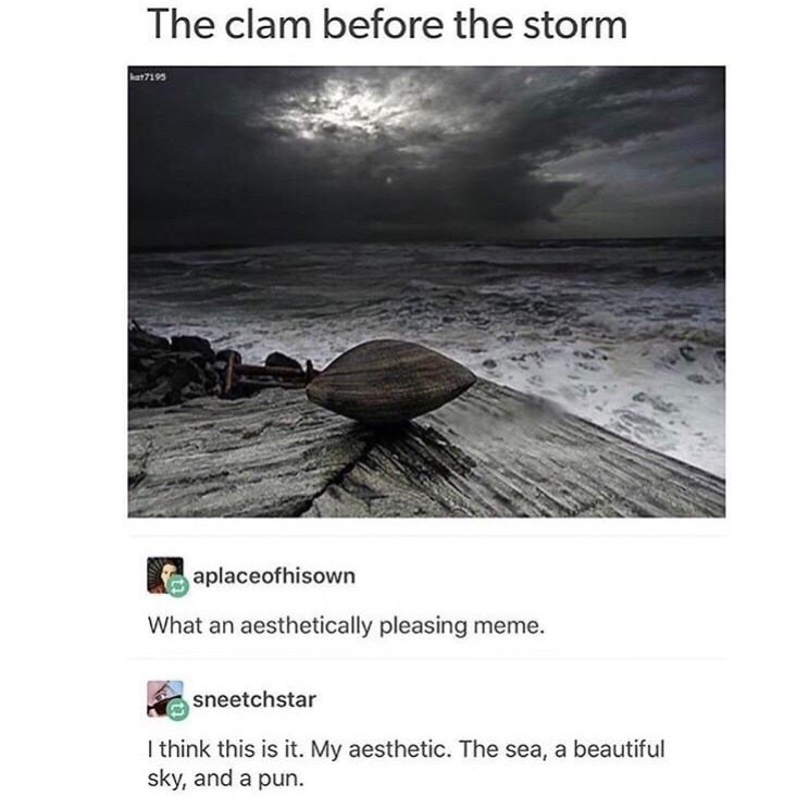 strange meme about using artistic photo to make a pun