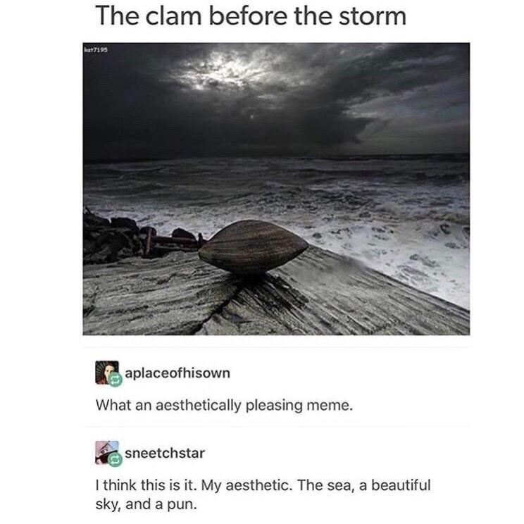 strange meme about using artistic photo to make a pun