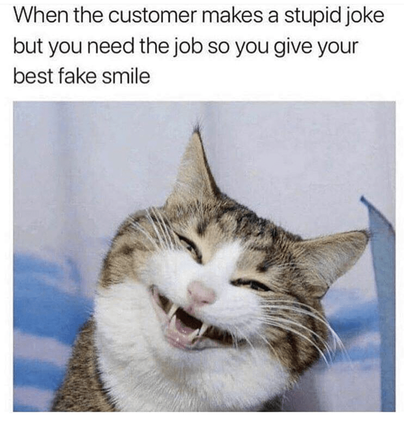 "Caption that reads, ""When the customer makes a stupid joke but you need the job so you give your best fake smile"" above a pic of a cat with a big fake smile"