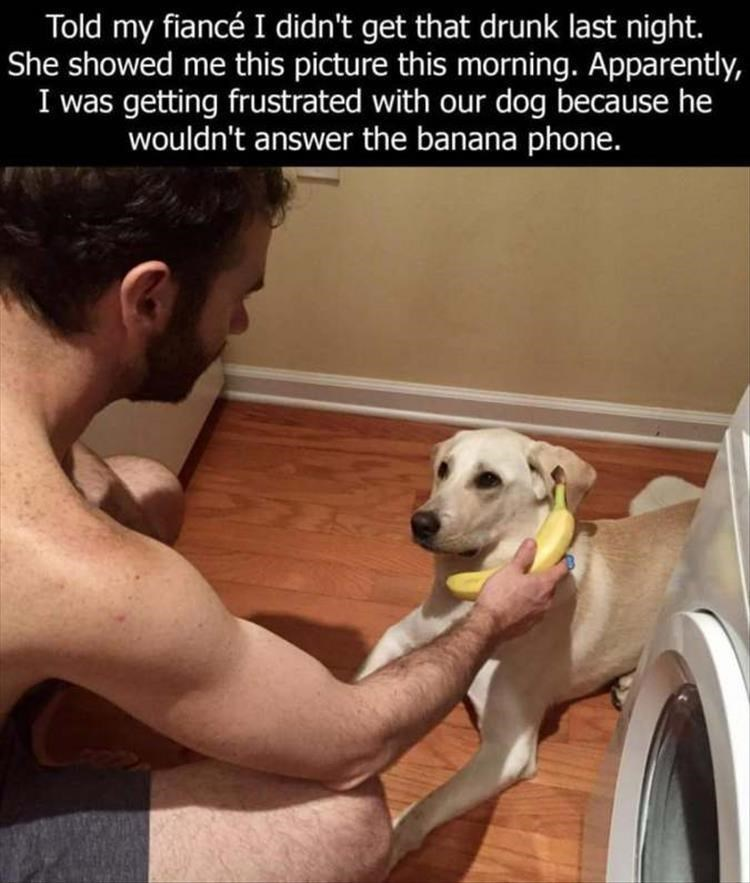 pic of shirtless man holding a banana to a dog's ear like it's a phone