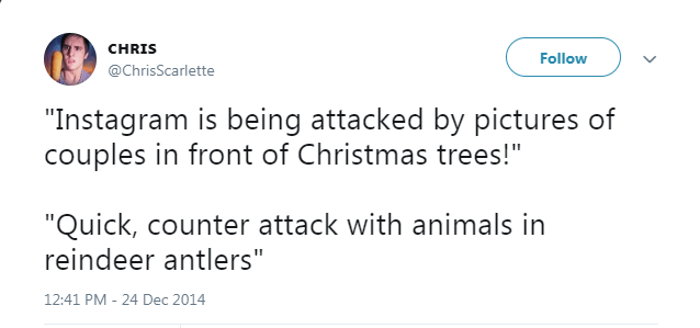"""Text - CHRIS Follow @ChrisScarlette """"Instagram is being attacked by pictures of couples in front of Christmas trees!"""" """"Quick, counter attack with animals in reindeer antlers"""" 12:41 PM - 24 Dec 2014"""