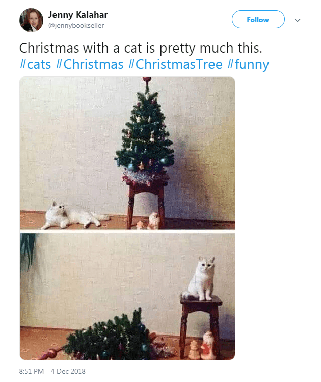 Christmas tree - Jenny Kalahar Follow @jennybookseller Christmas with a cat is pretty much this. #cats #Christmas #ChristmasTree #funny 8:51 PM - 4 Dec 2018