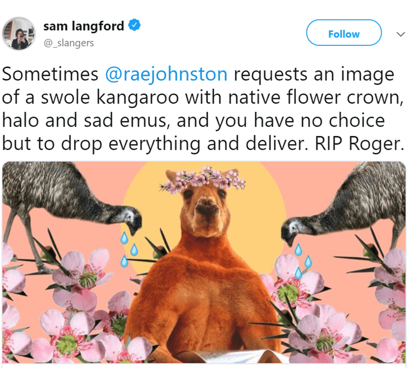Adaptation - sam langford Follow @_slangers Sometimes @raejohnston requests an image of a swole kangaroo with native flower crown, halo and sad emus, and you have no choice but to drop everything and deliver. RIP Roger.