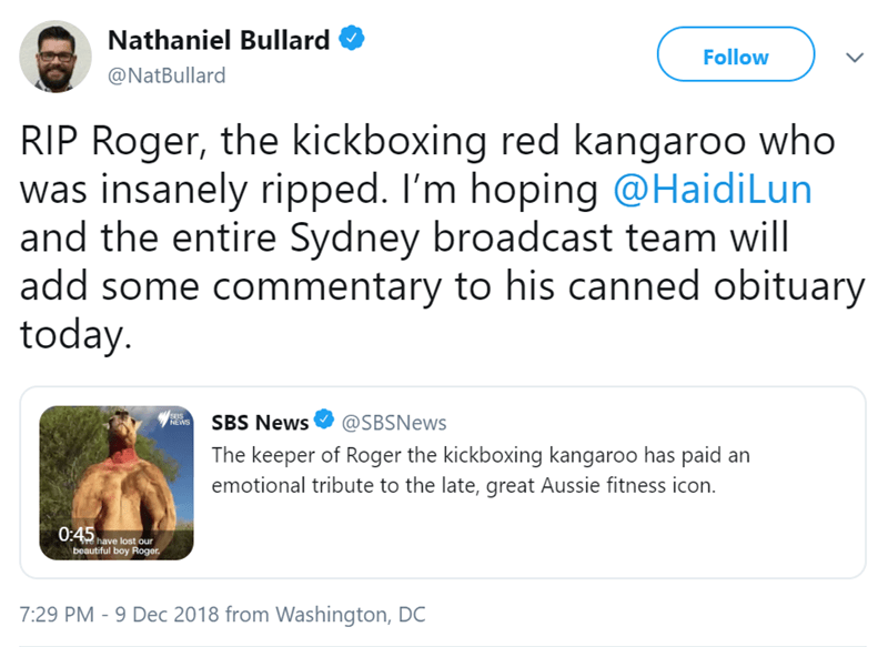 Text - Nathaniel Bullard Follow @NatBullard RIP Roger, the kickboxing red kangaroo who was insanely ripped. I'm hoping @HaidiLun and the entire Sydney broadcast team will add some commentary to his canned obituary today. SBS NEWS SBS News @SBSNews The keeper of Roger the kickboxing kangaroo has paid an emotional tribute to the late, great Aussie fitness icon. 0:45 have lost our beautiful boy Roger 7:29 PM -9 Dec 2018 from Washington, DC