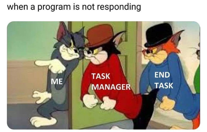 meme about force shutting a frozen program with picture of Tom Cat bringing bullies over
