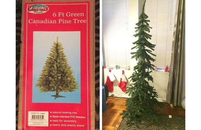 online shopping fail of a pine tree that is much smaller than advertised