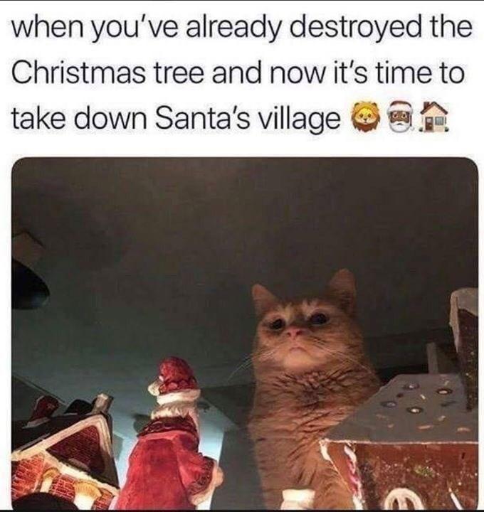 meme of a cat looking down at a santa doll