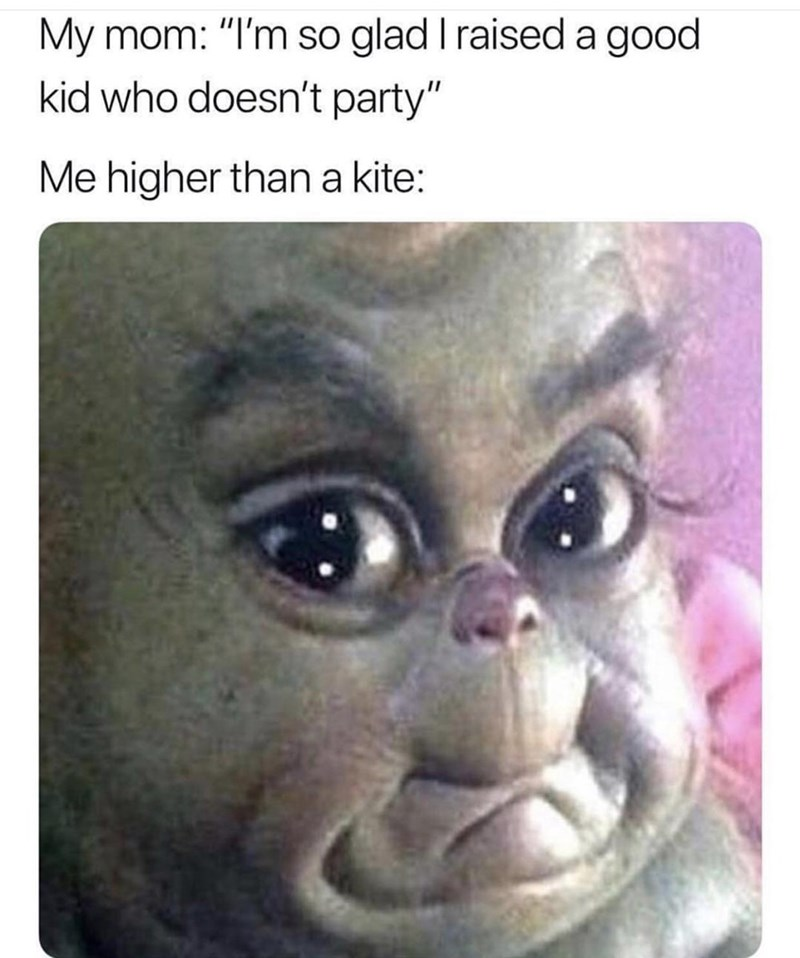 meme about your mom saying how good you are when you're high