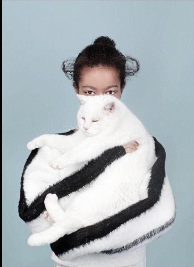 optical illusion - Fur