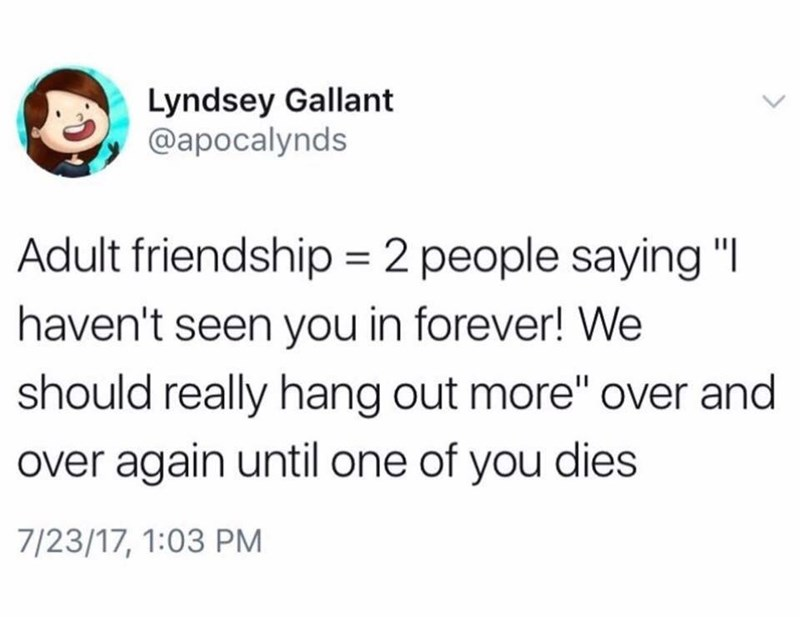 post about never seeing your friends when you're an adult