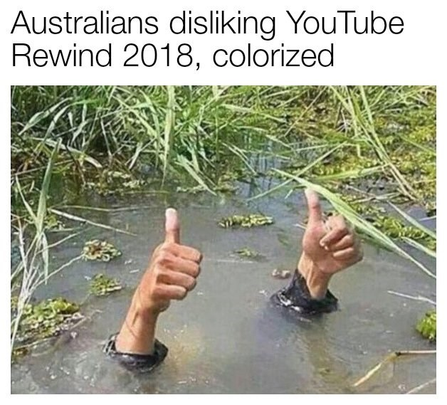 "Caption that reads, ""Australians disliking YouTube Rewind 2018, colorized"" above a pic of someone underwater giving a thumbs-up above water"