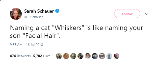 """Text - Sarah Schauer Follow @SJSchauer Naming a cat """"Whiskers"""" is like naming your son """"Facial Hair"""". 9:55 AM - 16 Jul 2018 676 Retweets 5,782 Likes"""