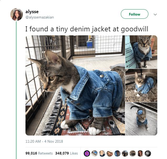 Denim - alysse @alyssemazakian Follow I found a tiny denim jacket at goodwill aw 11:20 AM 4 Nov 2018 99,016 Retweets 348,079 Likes