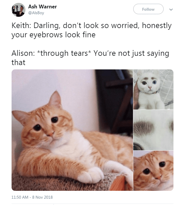 Cat - Ash Warner Follow @AlsBoy Keith: Darling, don't look so worried, honestly your eyebrows look fine Alison: *through tears* You're not just saying that 11:50 AM 8 Nov 2018