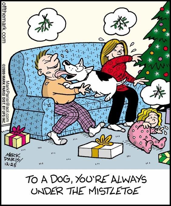 Cartoon - -1-1--1-1- -1-9-1- -1 1-1 7-/- 1 -1- - MARK PARI 12-25 TO A DOG, YoU'RE ALWAYS UNDER THE MISTLETOE offthemark.com MarkParisi@aol.com 2009 MARK PARISI DIST. BY UFS INC.