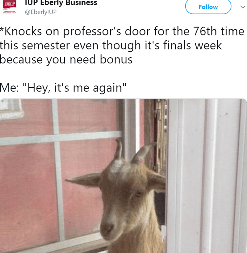 """Goats - TUP Eberly Business @EberlylUP IUP Follow *Knocks on professor's door for the 76th time this semester even though it's finals week because you need bonus Me: """"Hey, it's me again"""""""